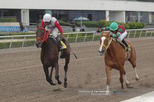 Zandunga Bonita (MEX) y Chumpiteada (MEX) Foto Cortesía de Miguel Angel Espinoza