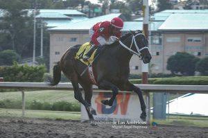 Huitlacoche (MEX) ganando el Clásico Otoño. Foto Cortesía de Miguel Angel Espinoza
